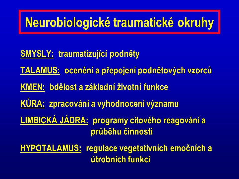 Neurobiologické traumatické okruhy