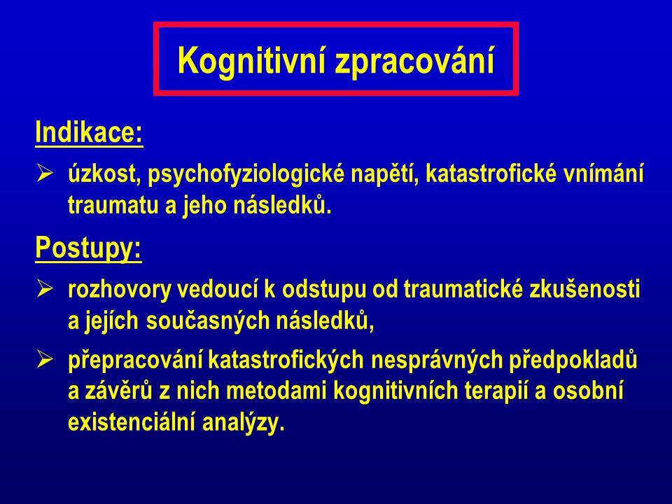 Kognitivní zpracování