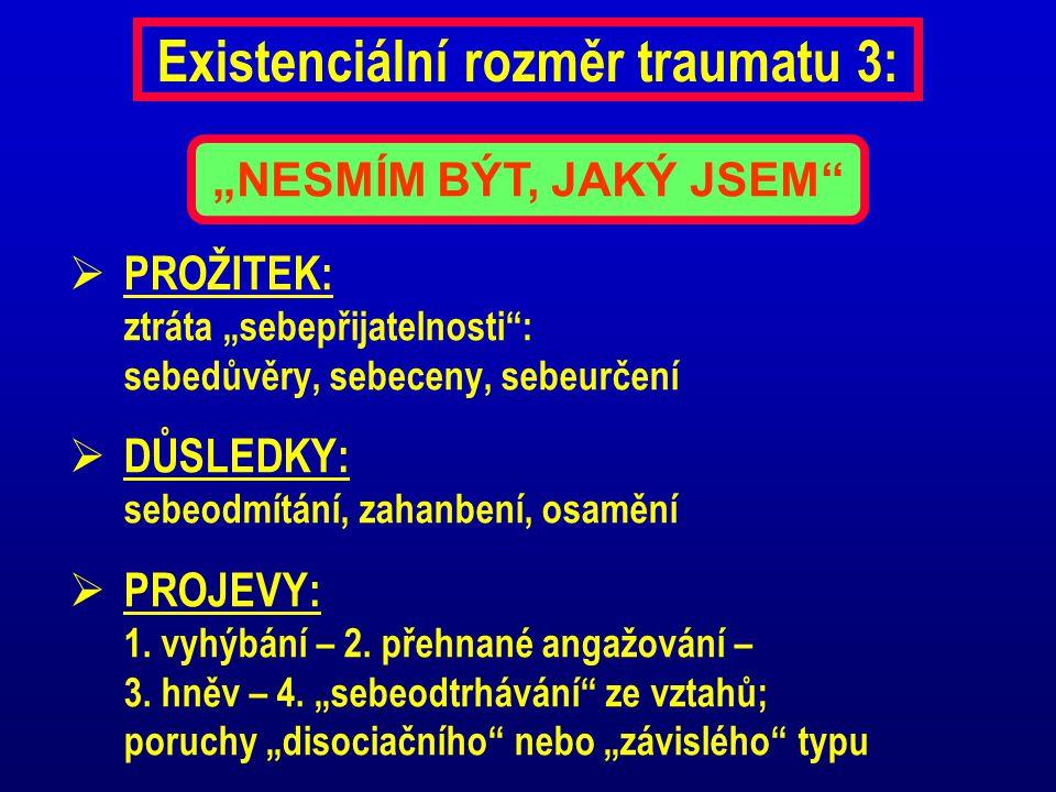 Existenciální rozměr traumatu 3: