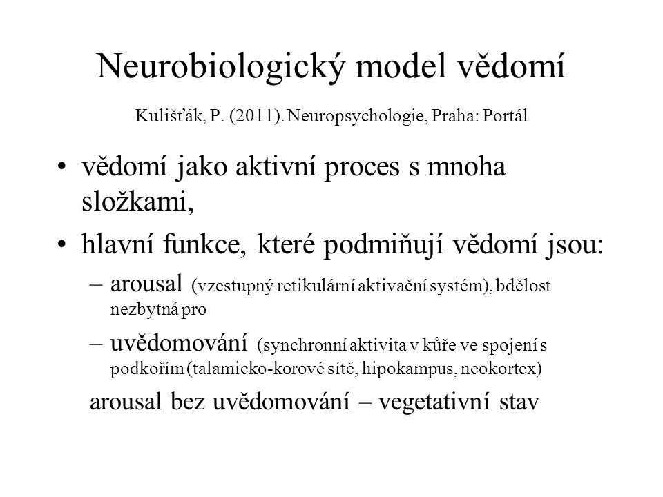 Neurobiologický model vědomí Kulišťák, P. (2011)