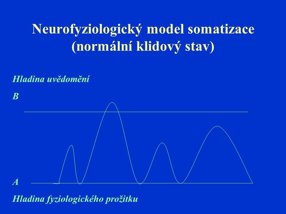 Neurofyziologický model somatizace (normální klidový stav)