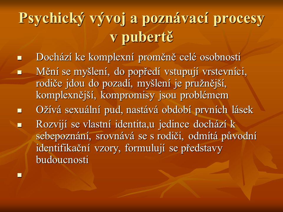 Psychický vývoj a poznávací procesy v pubertě