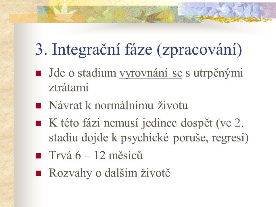 3. Integrační fáze (zpracování)