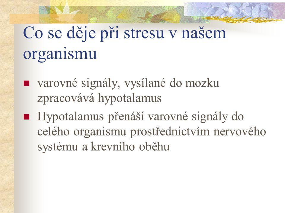 Co se děje při stresu v našem organismu