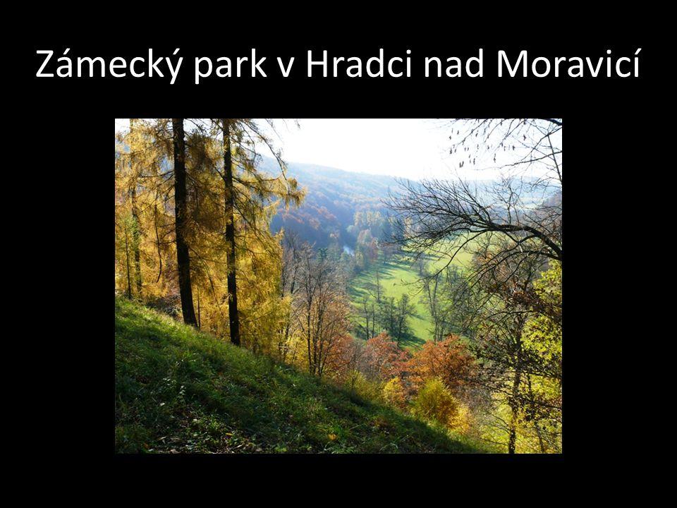 Zámecký park v Hradci nad Moravicí