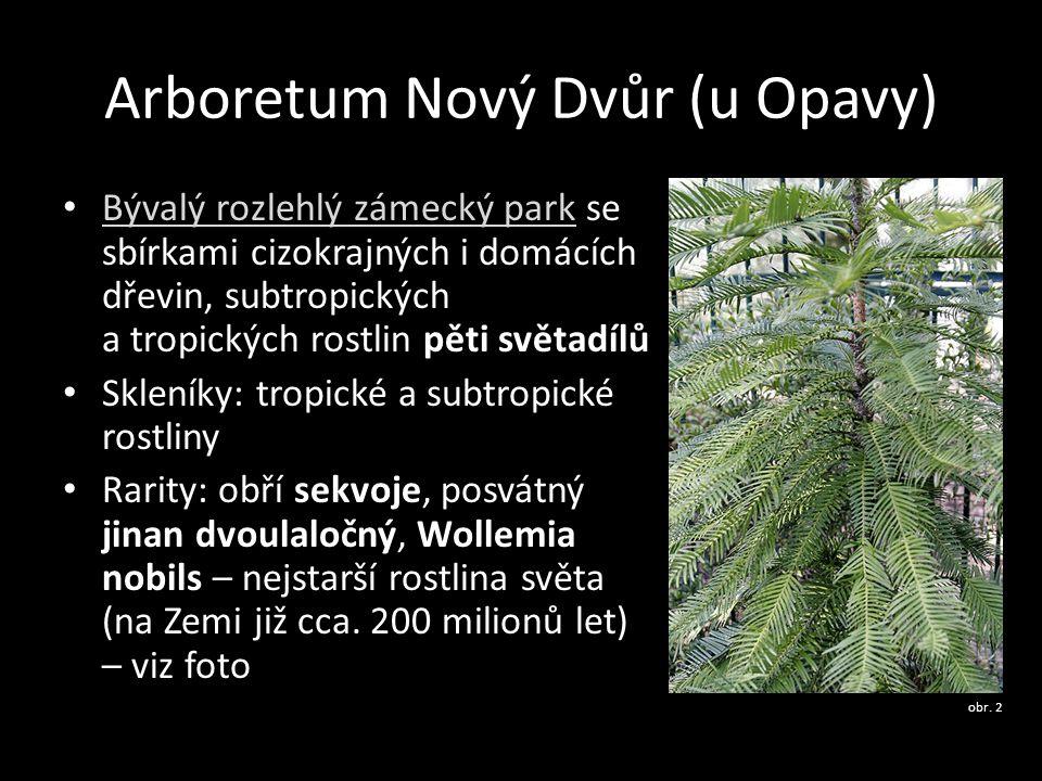 Arboretum Nový Dvůr (u Opavy)