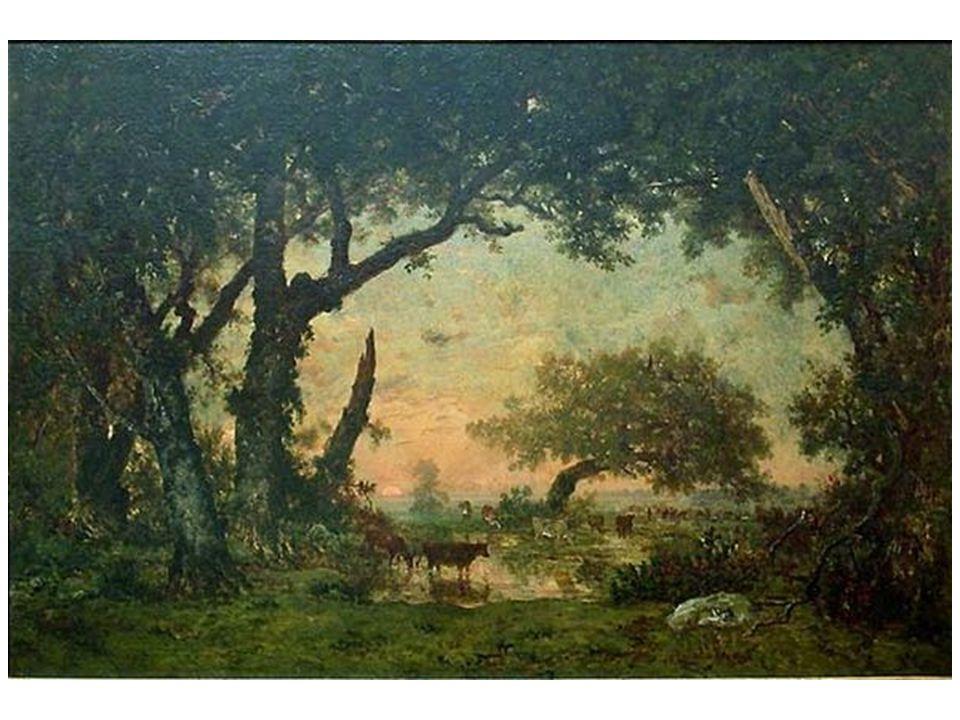 Východ z lesa; východ slunce