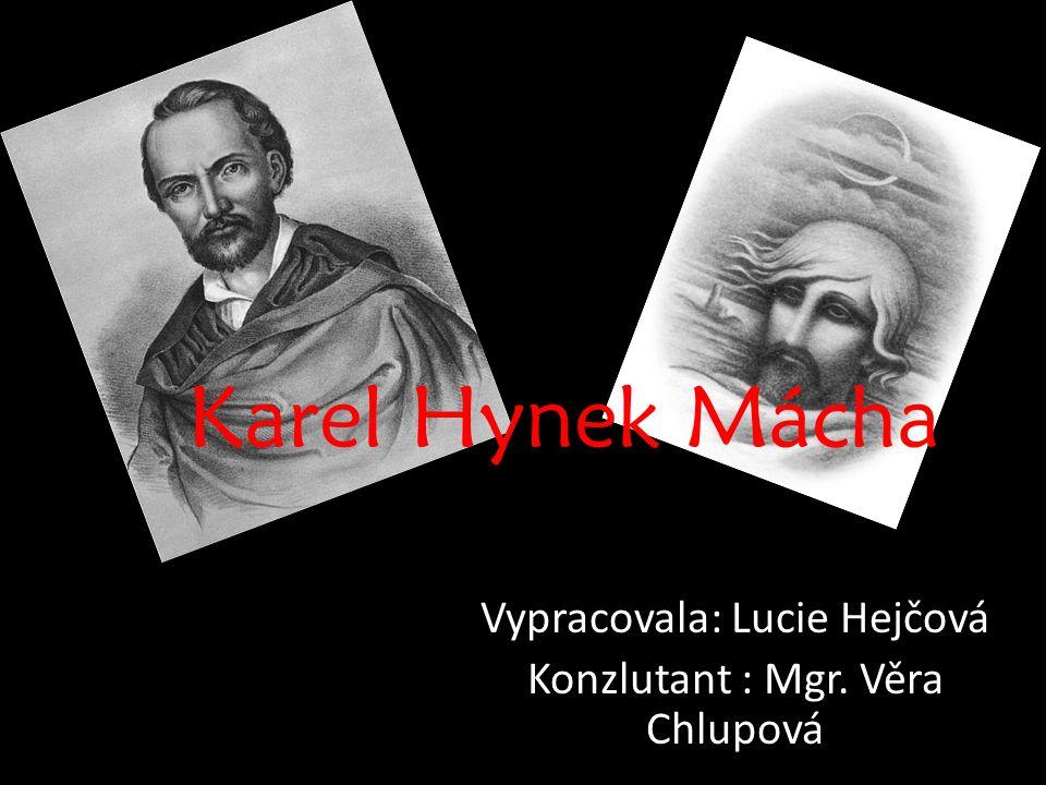 Vypracovala: Lucie Hejčová Konzlutant : Mgr. Věra Chlupová