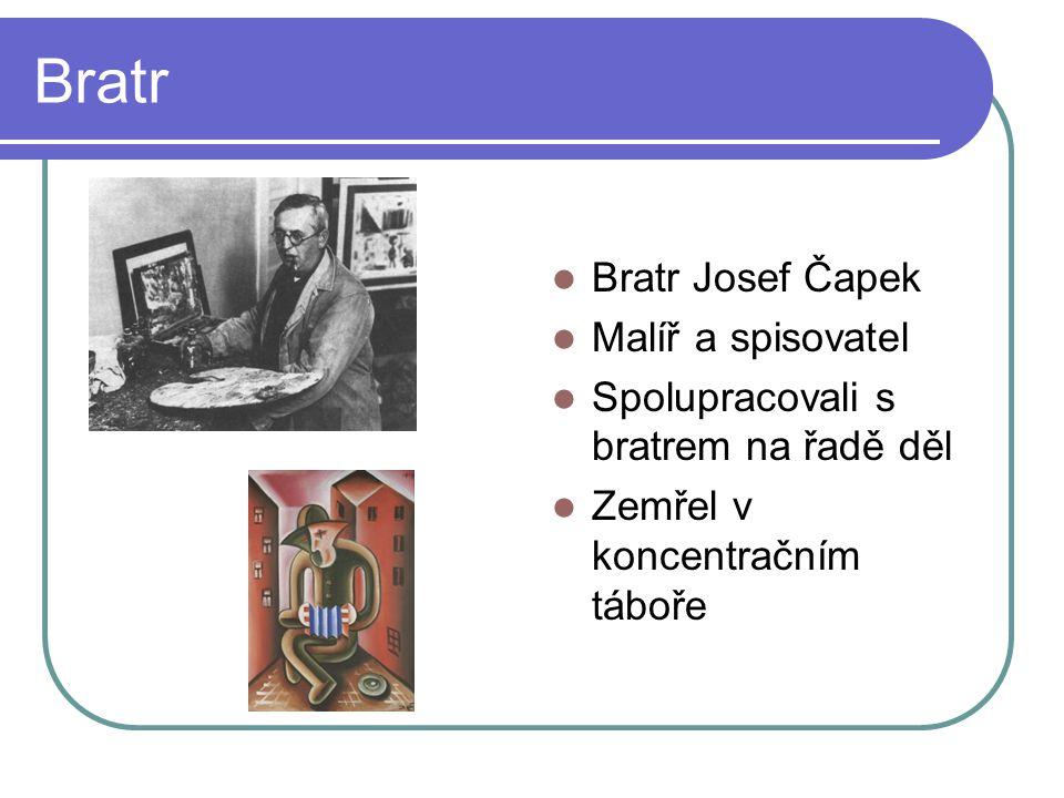 Bratr Bratr Josef Čapek Malíř a spisovatel