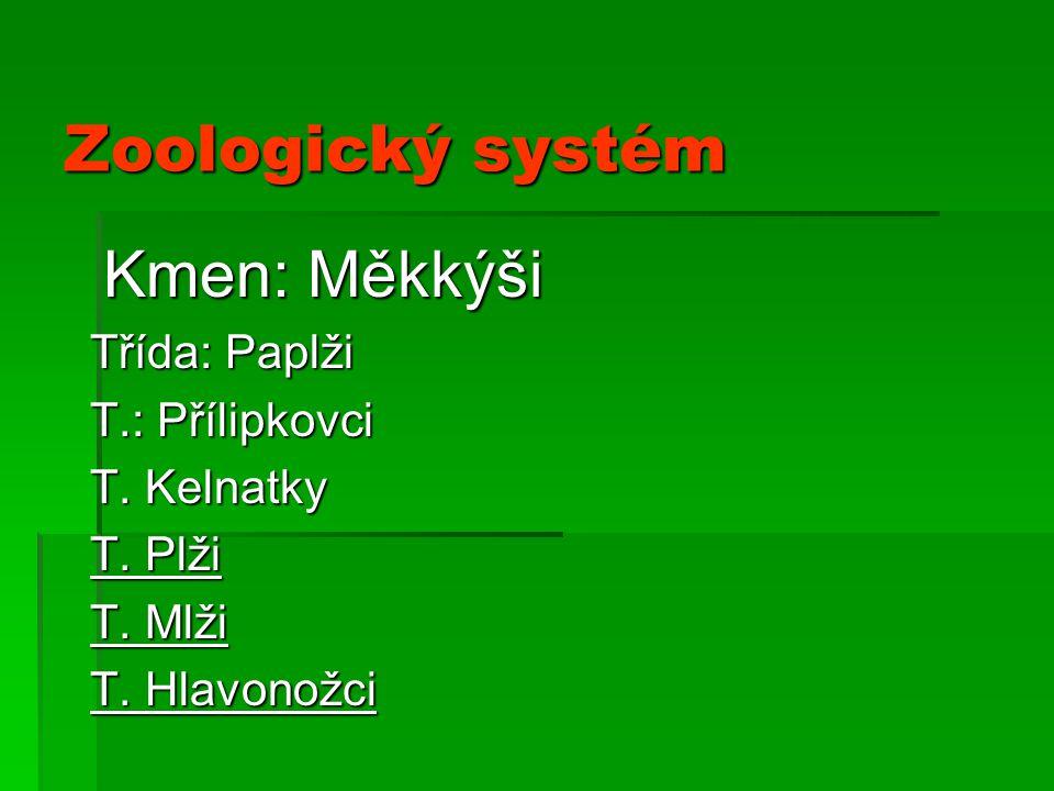 Zoologický systém Kmen: Měkkýši Třída: Paplži T.: Přílipkovci