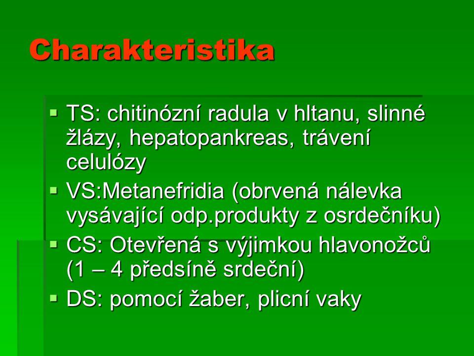 Charakteristika TS: chitinózní radula v hltanu, slinné žlázy, hepatopankreas, trávení celulózy.