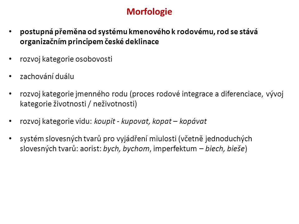 Morfologie postupná přeměna od systému kmenového k rodovému, rod se stává organizačním principem české deklinace.