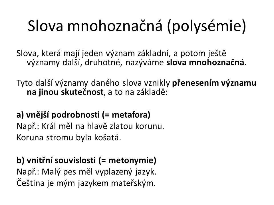 Slova mnohoznačná (polysémie)