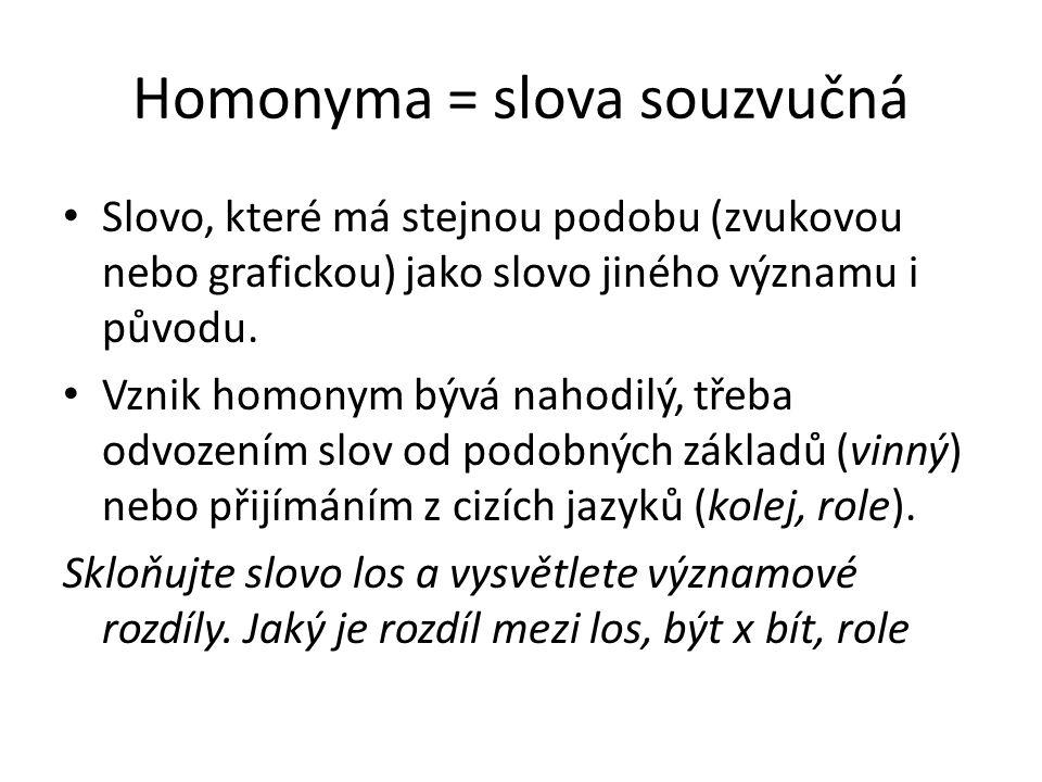 Homonyma = slova souzvučná