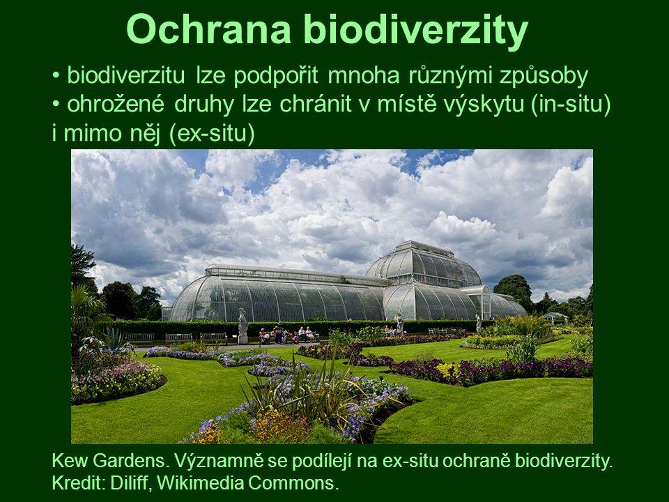 Ochrana biodiverzity biodiverzitu lze podpořit mnoha různými způsoby