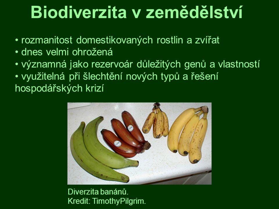 Biodiverzita v zemědělství