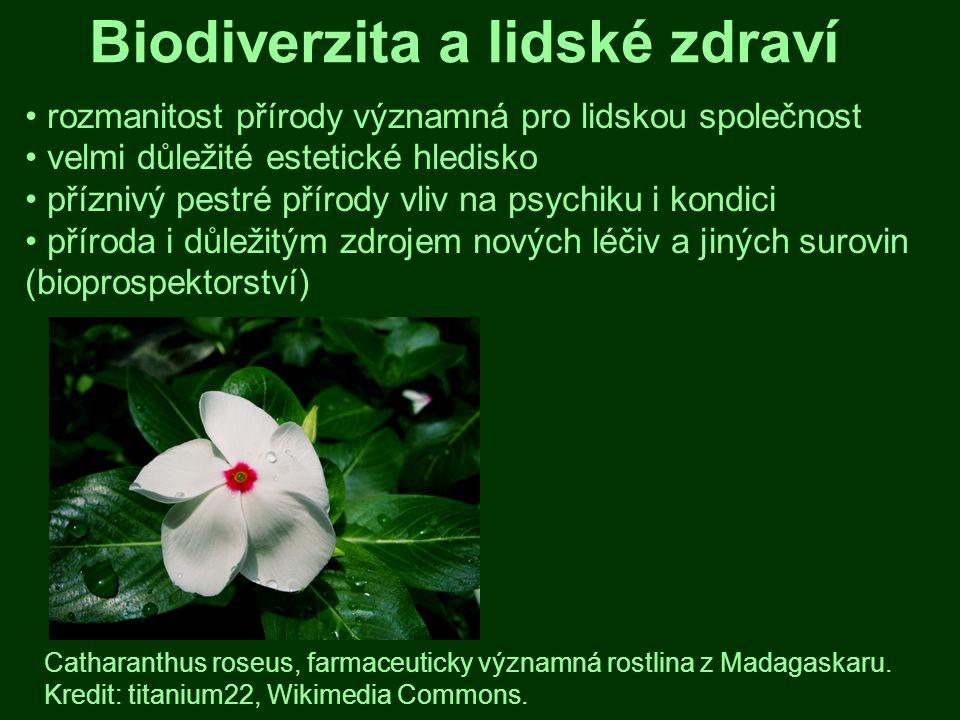 Biodiverzita a lidské zdraví
