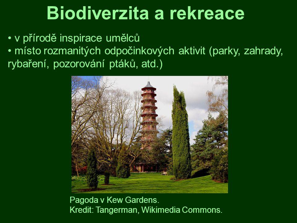 Biodiverzita a rekreace
