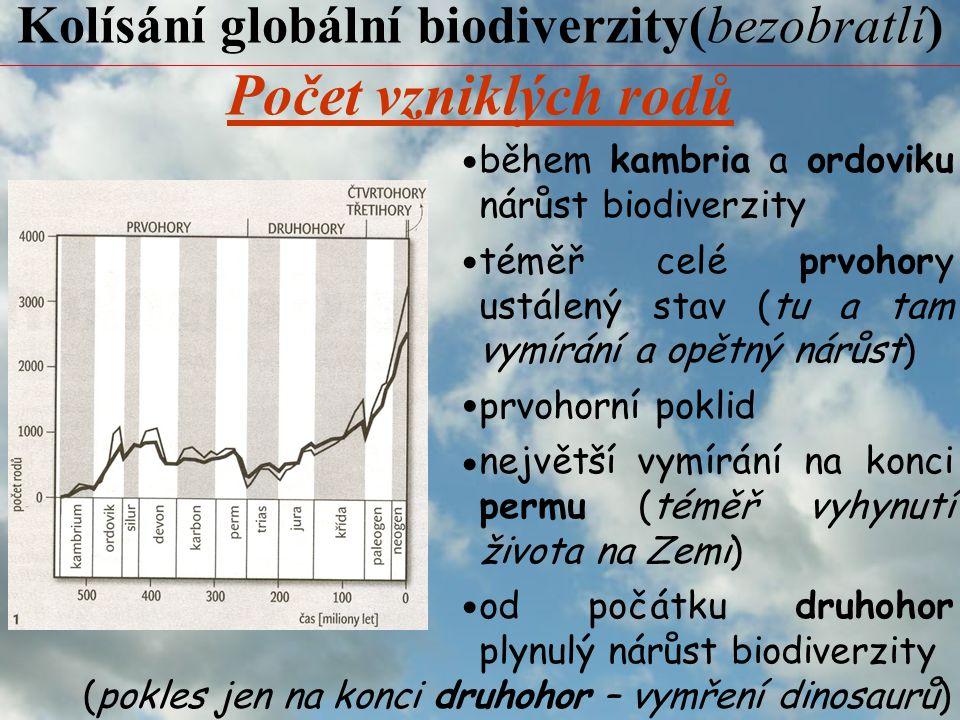Kolísání globální biodiverzity(bezobratlí)