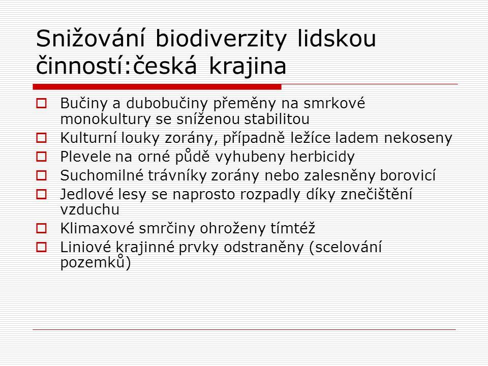 Snižování biodiverzity lidskou činností:česká krajina