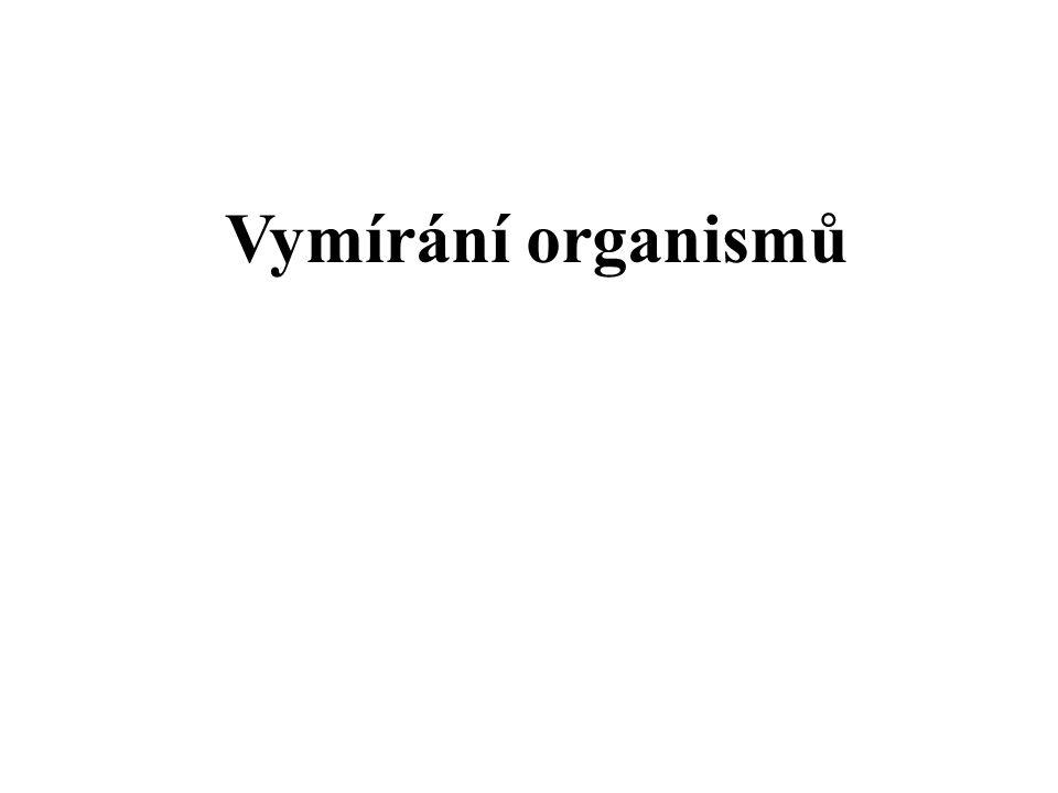 Vymírání organismů