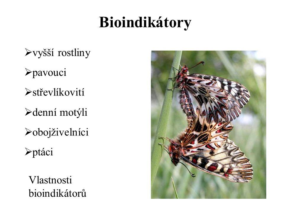 Bioindikátory vyšší rostliny pavouci střevlíkovití denní motýli