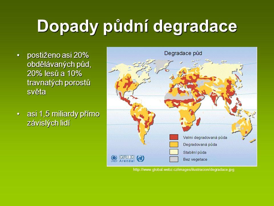 Dopady půdní degradace