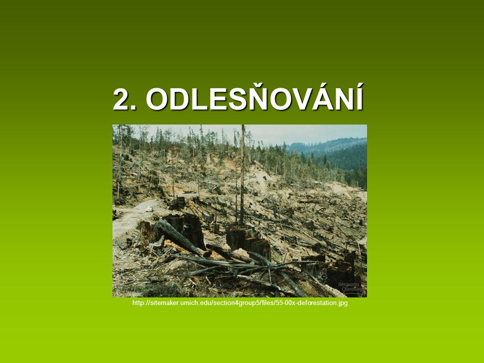 2. ODLESŇOVÁNÍ http://sitemaker.umich.edu/section4group5/files/55-00x-deforestation.jpg