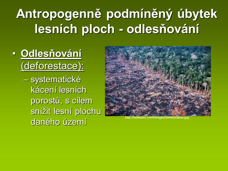 Antropogenně podmíněný úbytek lesních ploch - odlesňování