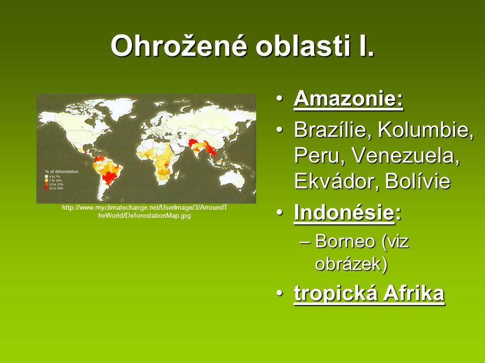 Ohrožené oblasti I. Amazonie: