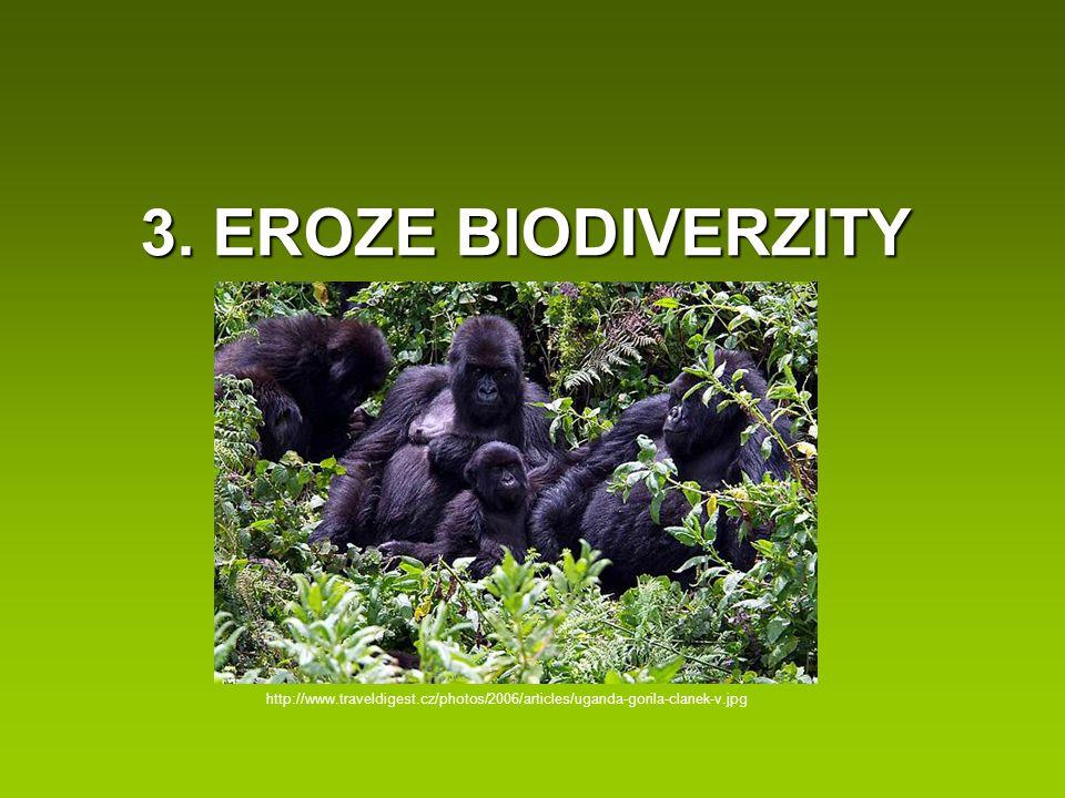 3. EROZE BIODIVERZITY http://www.traveldigest.cz/photos/2006/articles/uganda-gorila-clanek-v.jpg