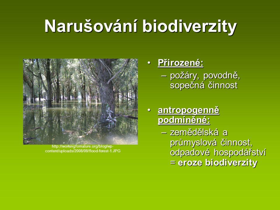 Narušování biodiverzity