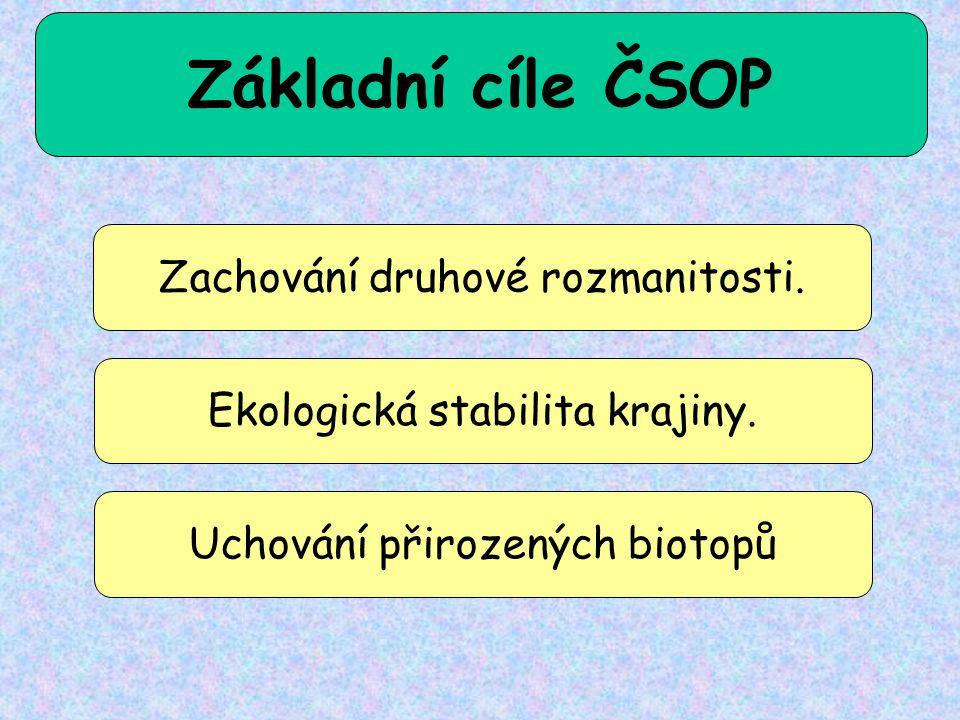 Základní cíle ČSOP Zachování druhové rozmanitosti.