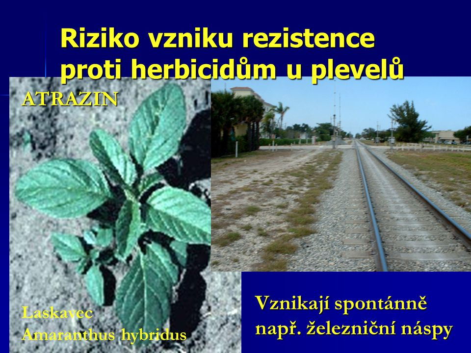 Riziko vzniku rezistence proti herbicidům u plevelů