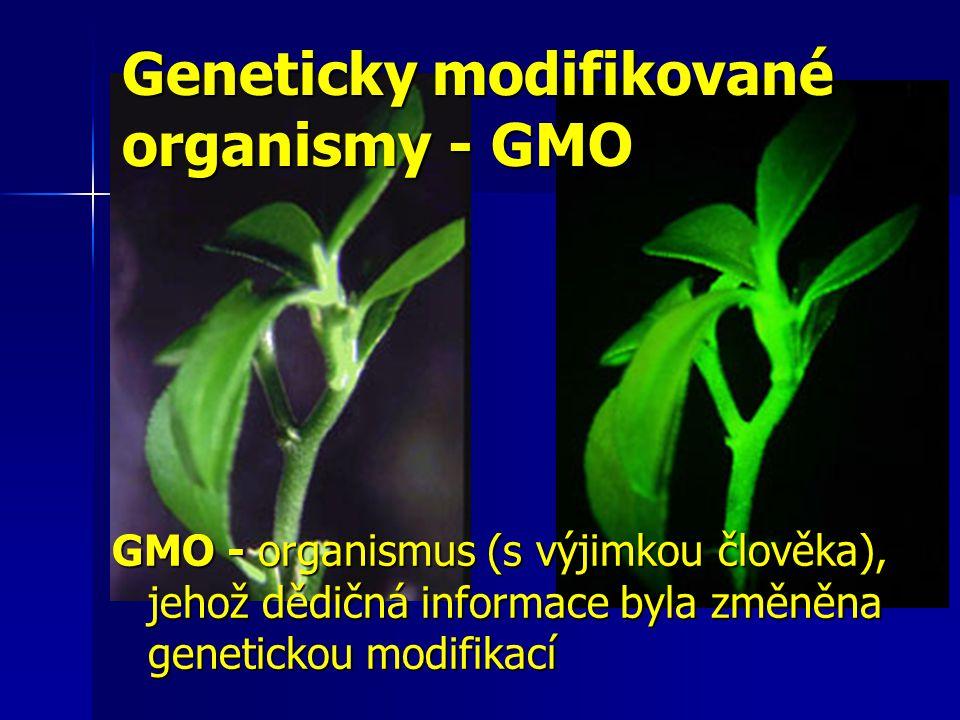 Geneticky modifikované organismy - GMO