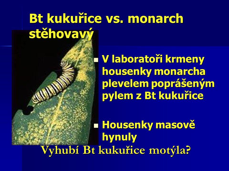 Bt kukuřice vs. monarch stěhovavý