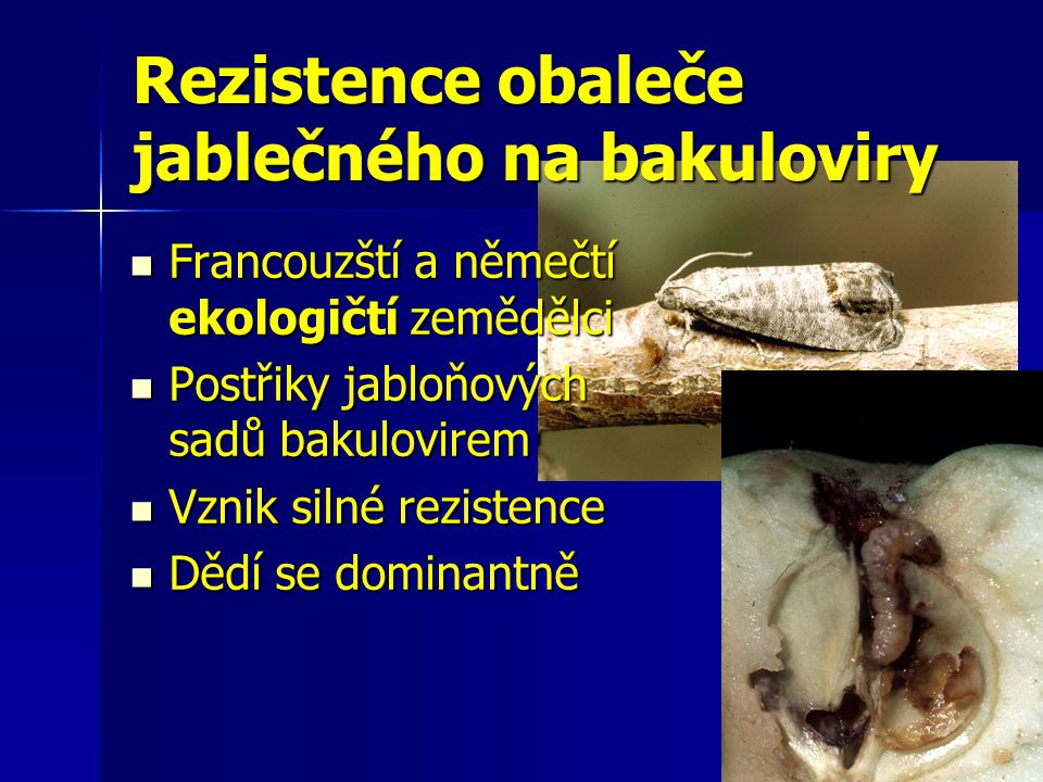 Rezistence obaleče jablečného na bakuloviry