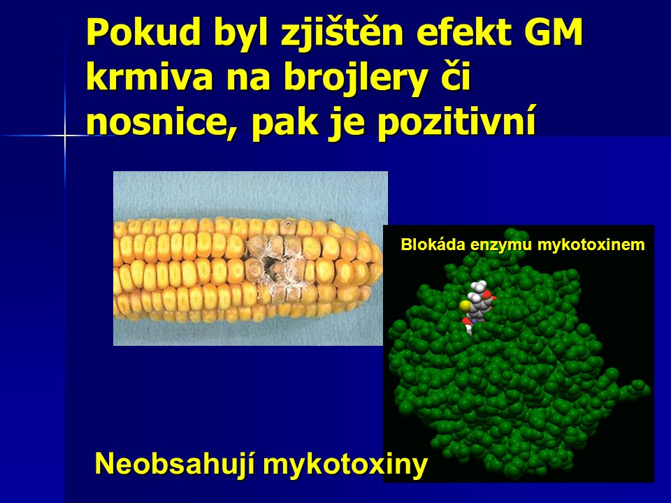 Pokud byl zjištěn efekt GM krmiva na brojlery či nosnice, pak je pozitivní