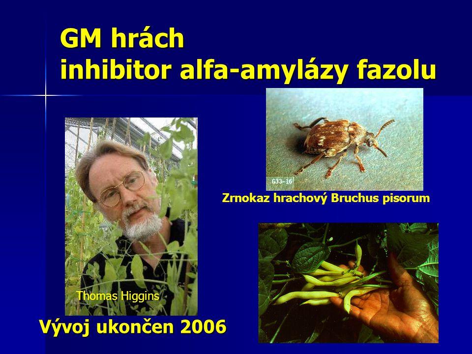 GM hrách inhibitor alfa-amylázy fazolu