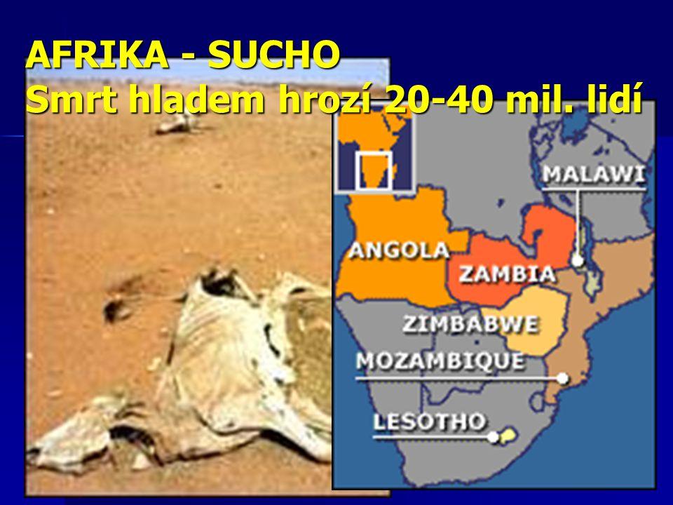 AFRIKA - SUCHO Smrt hladem hrozí 20-40 mil. lidí