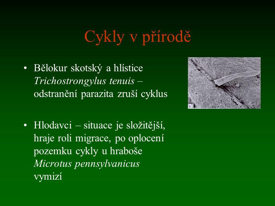 Cykly v přírodě Bělokur skotský a hlístice Trichostrongylus tenuis – odstranění parazita zruší cyklus.