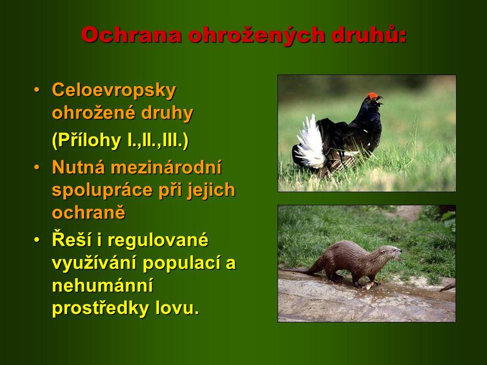 Ochrana ohrožených druhů: