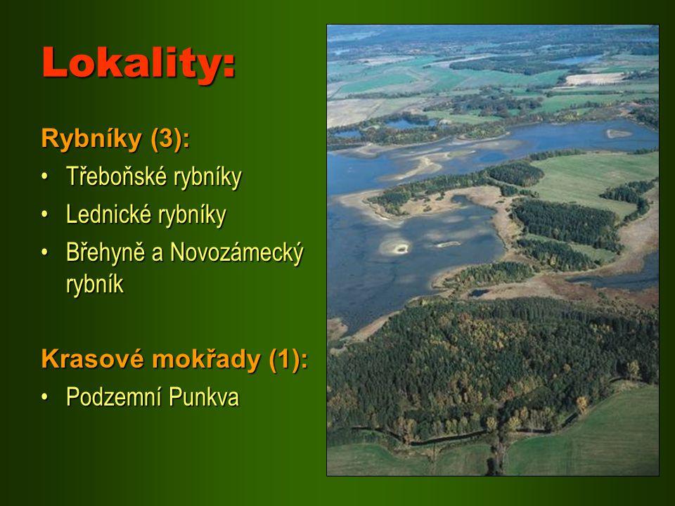 Lokality: Rybníky (3): Třeboňské rybníky Lednické rybníky