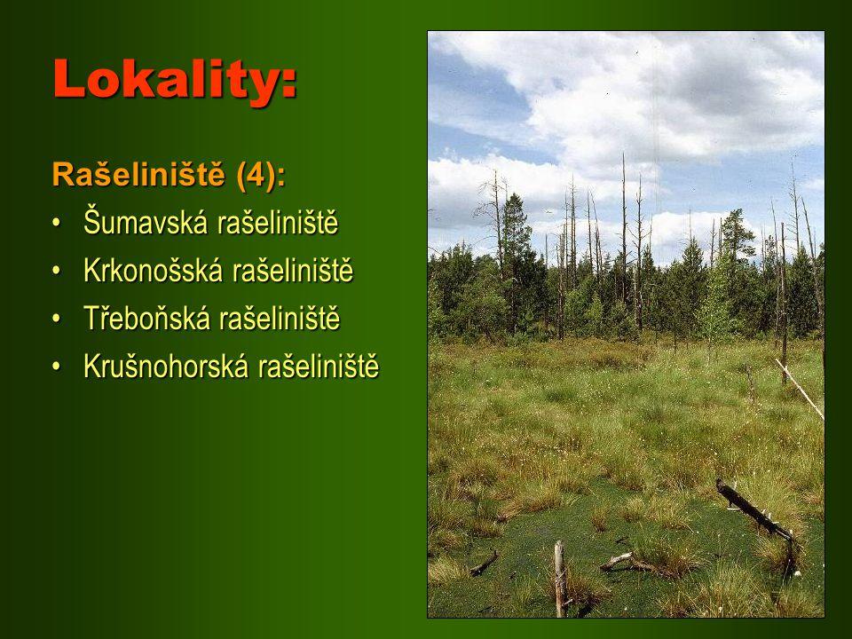 Lokality: Rašeliniště (4): Šumavská rašeliniště Krkonošská rašeliniště