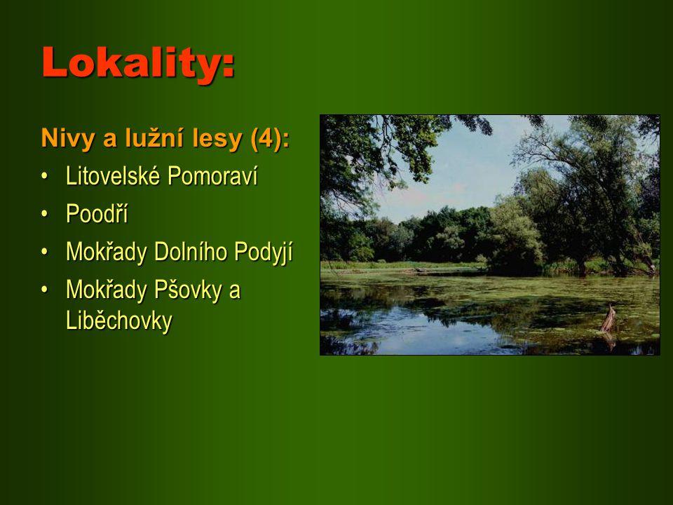 Lokality: Nivy a lužní lesy (4): Litovelské Pomoraví Poodří