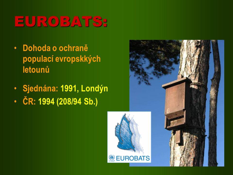 EUROBATS: Dohoda o ochraně populací evropskkých letounů