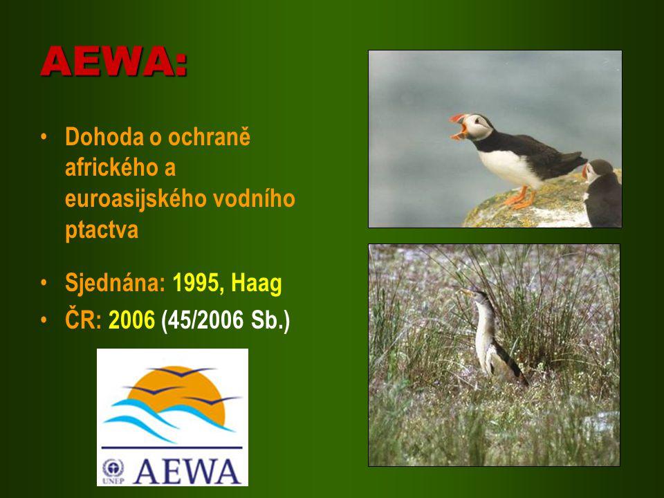 AEWA: Dohoda o ochraně afrického a euroasijského vodního ptactva