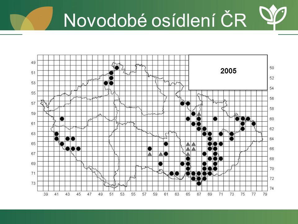Novodobé osídlení ČR 2005