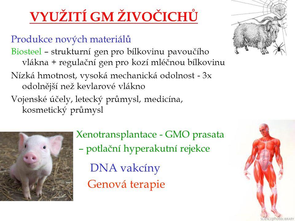 VYUŽITÍ GM ŽIVOČICHŮ DNA vakcíny Genová terapie