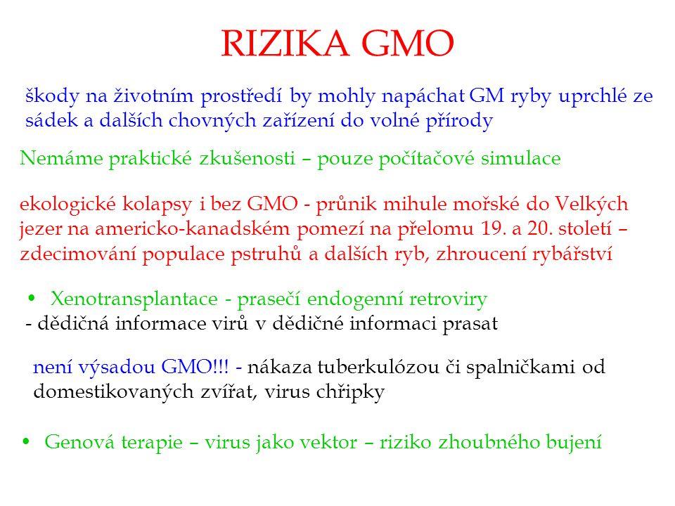 RIZIKA GMO škody na životním prostředí by mohly napáchat GM ryby uprchlé ze sádek a dalších chovných zařízení do volné přírody.